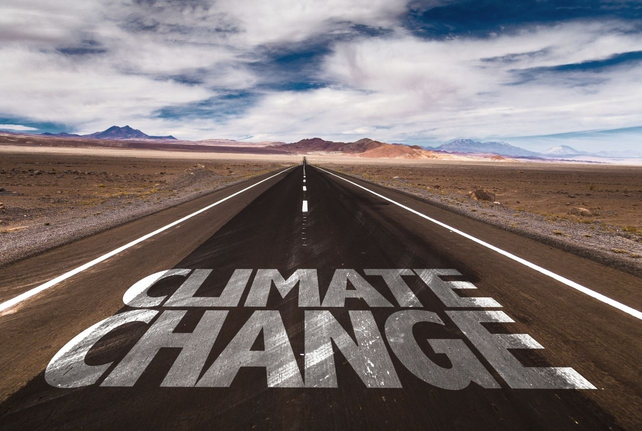 Strategies to Avoid Climate Change