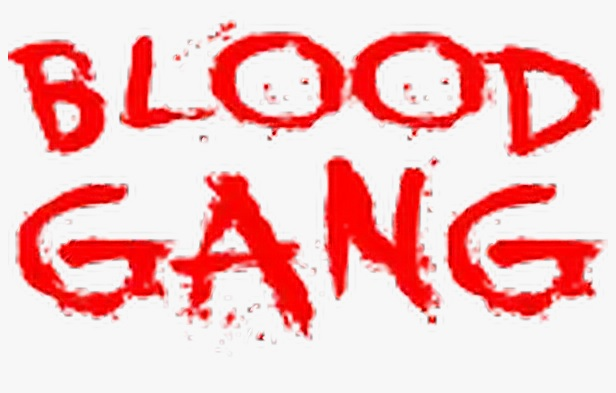 Bloods Gang History and Structure