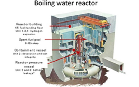 Japan Fukushima Reactor Catastrophe: Problems and Solutions