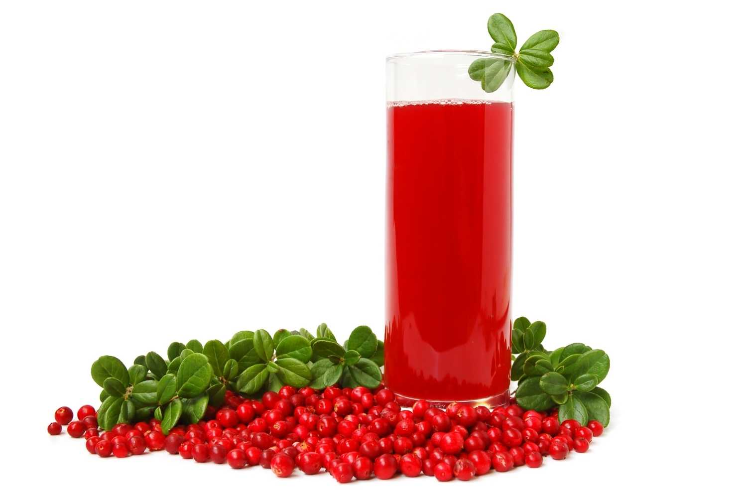 Atlantic Quench Cranberries Inc. Marketing Strategy Analysis