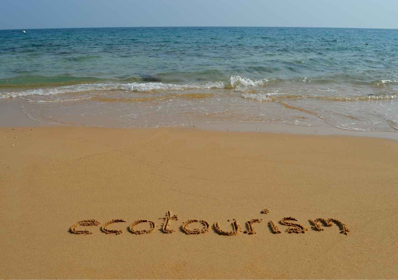 Role and Potential of Ecotourism in the UK
